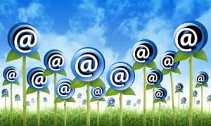 הגדלת רשימות תפוצה| שיווק באינטרנט לעסקים